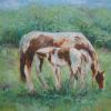 Horses for Alethea - Oils on Canvas
